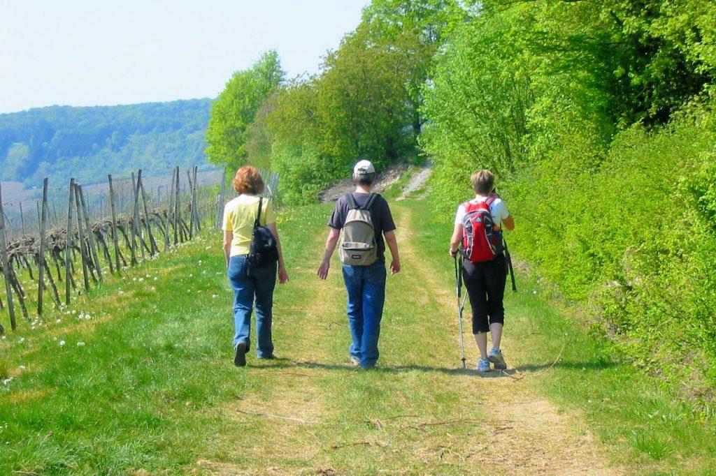 Wandern mit Parkinson